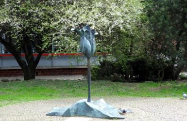 Kwiat Życia i Pokoju - mało znany pomnik na zieleńcu przy ulicy Szerokiej