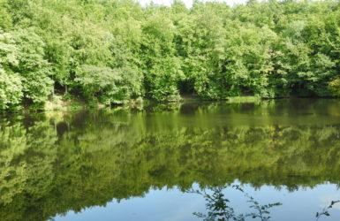 """Rezerwat """"Jar rzeki Raduni"""" został włączony w obszar Europejskiej Sieci Ekologicznej Natura 2000"""