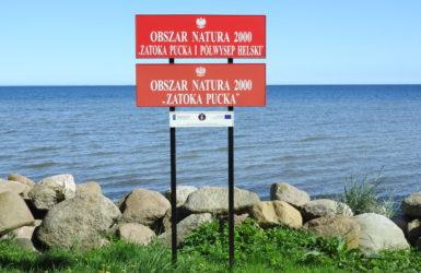 Walory przyrodnicze to wielki atut Rzucewa i okolicy.