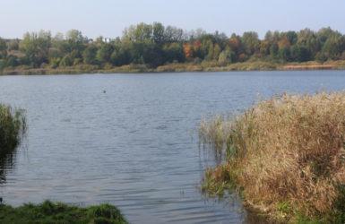 Jezioro Jasień w Gdańsku.