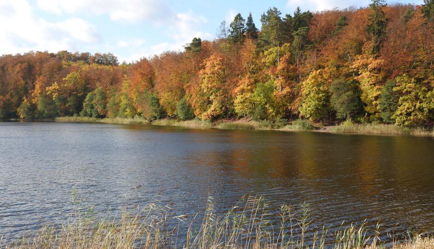 Jezioro Otomińskie - jedno z najciekawszych jezior z okolic Gdańska.