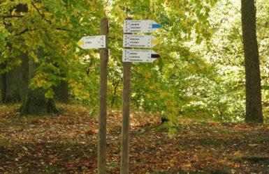 Przy Jeziorze Otomińskim krzyżują się trzy piesze szlaki turystyczne.